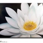 FL #1107 White Lotus